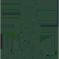Seedlip Logo def