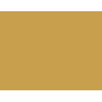 Damier-logo